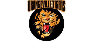 Orangeville Girls Hockey (Orangeville Tigers) 's logo