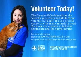 Ontario SPCA Orangeville and District Animal Center 's logo
